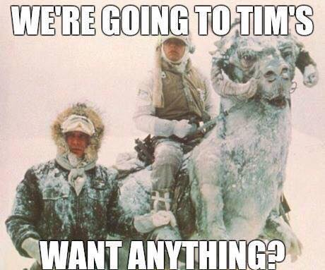 going-to-tims
